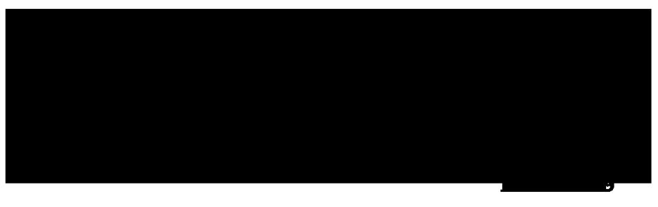 Mẫu website  – túi xách